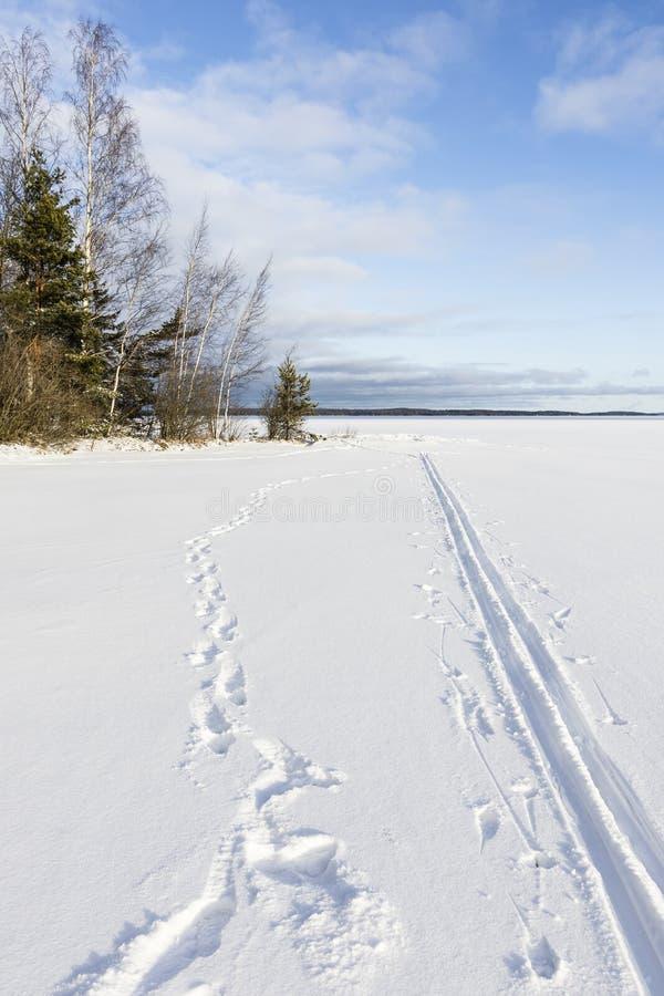 Traînez dans la calotte glaciaire couverte par neige dans le lac photographie stock libre de droits