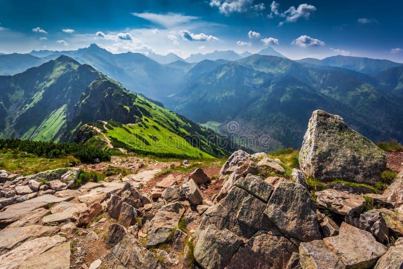 Traînez dans les montagnes de Tatras au jour ensoleillé images libres de droits
