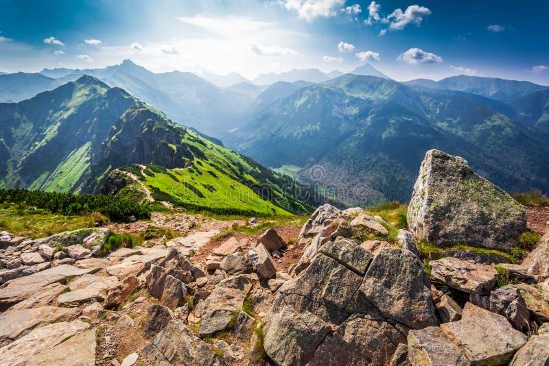 Traînez dans les montagnes de Tatras au jour ensoleillé photos stock