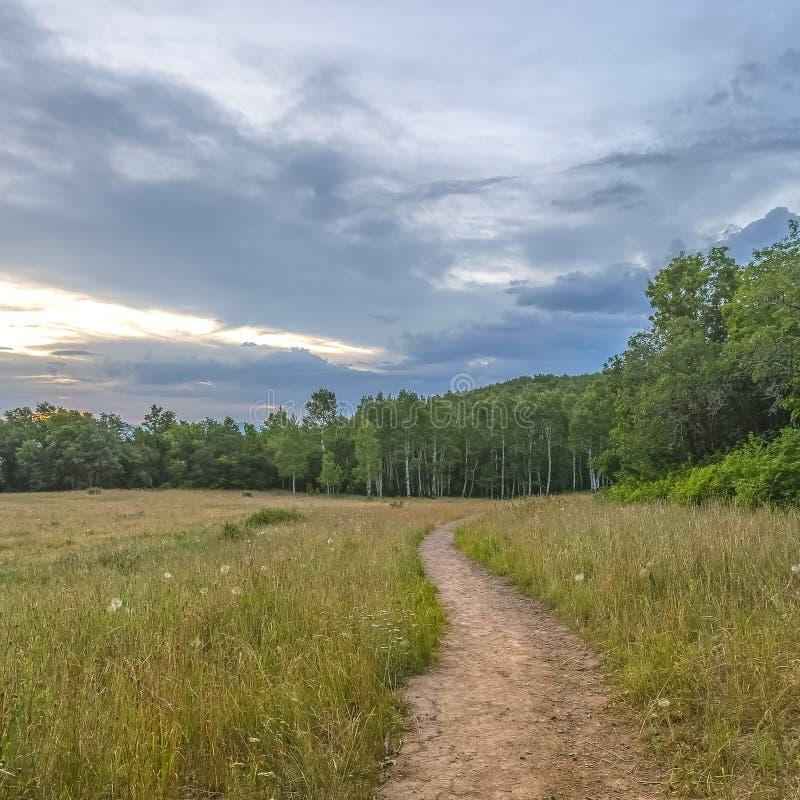 Traînez dans Provo Utah avec la vue des arbres et du ciel photo stock