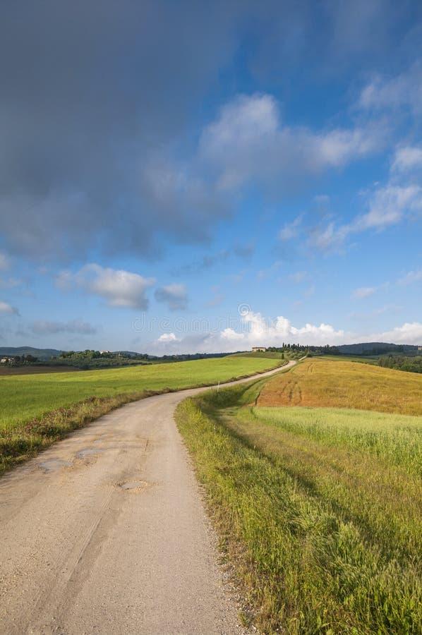 Traînez dans un domaine vert, Toscane, Italie photos libres de droits