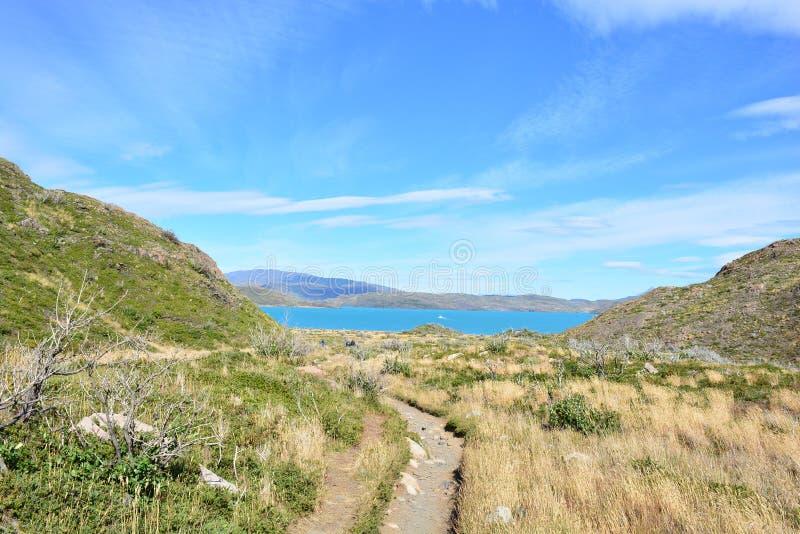 Download Traînez En Parc National De Torres Del Paine, Chili Image stock - Image du inside, paine: 87702083