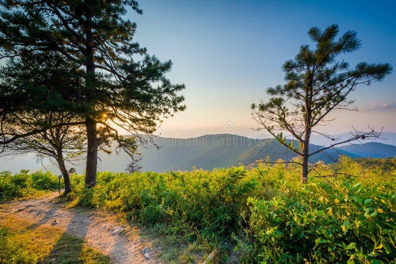 Traînez et vue de Ridge Mountains bleu au coucher du soleil dans Shenando photos libres de droits