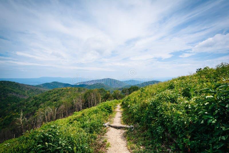 Traînez et vue de Ridge Mountains bleu, dans la nation de Shenandoah photos stock