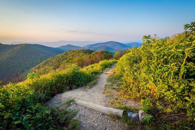 Traînez et vue de Ridge Mountains bleu dans Shenandoah Nationa photo libre de droits