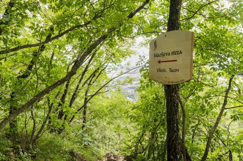 Traînez la marque sur le chemin au gora de Smarna, une hausse populaire de Ljubl photographie stock
