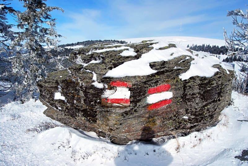 Traînez le flambage sur la pierre dans des alpes d'Autrichien d'hiver photographie stock