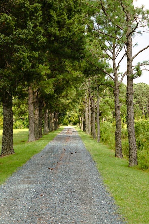 Traînez mener à la route à partir du cottage en Virginie rurale photo libre de droits