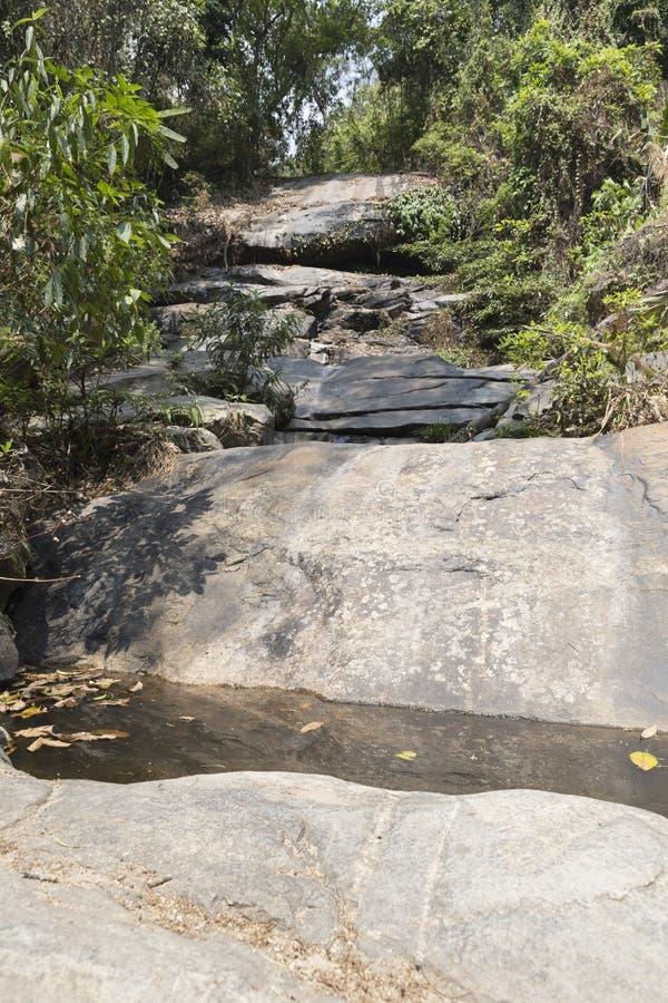 traînez sur la colline dans la forêt pour la hausse ou le trekking photo libre de droits