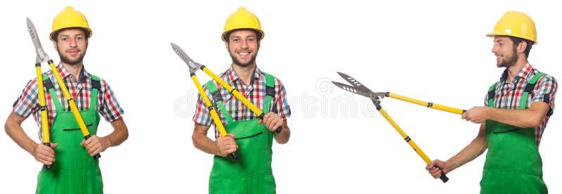 Trabajador con los esquileos aislados en blanco imagen de archivo