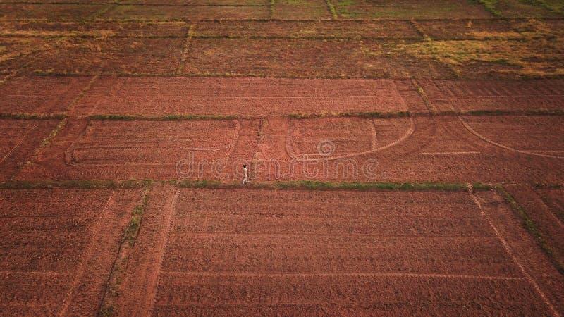 Trabajador de granja que camina en campo imagenes de archivo