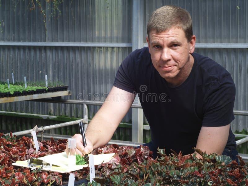 Trabajador de la casa verde fotos de archivo