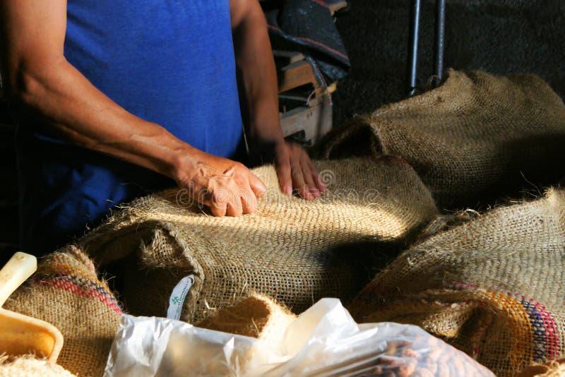Trabajador de una cacao-plantación foto de archivo