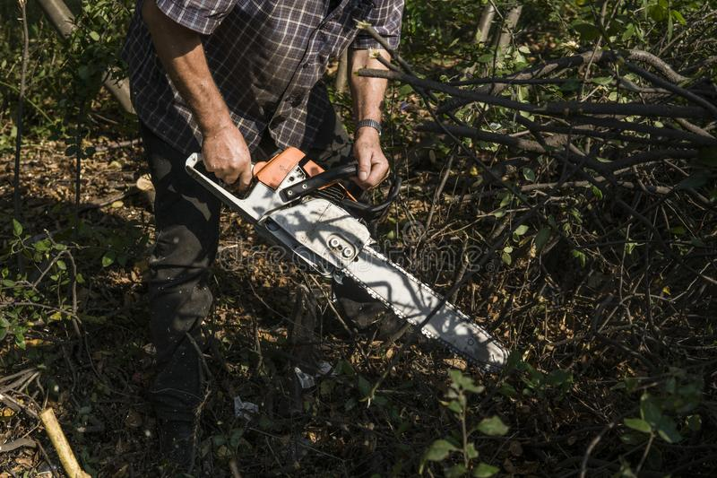 Trabajador del maderero del leñador en árbol de la madera de la leña del corte en bosque con la motosierra anaranjada fotos de archivo