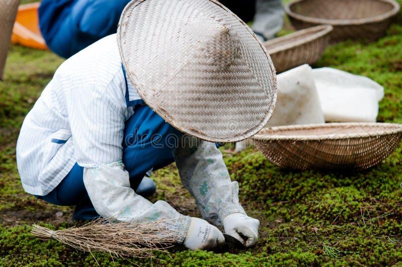 Trabajador en Japón fotos de archivo