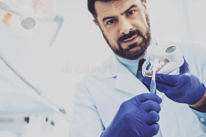 Trabajador médico competente que demuestra el modelo del mandíbula imagen de archivo libre de regalías