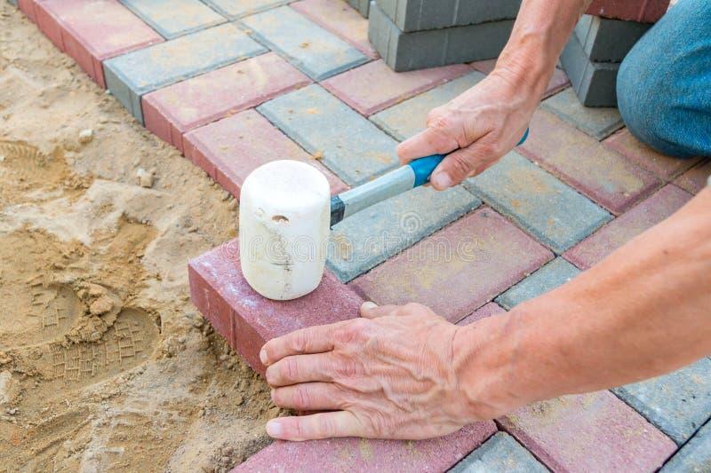 Trabajador que pone bloques de pavimentación concretos rojos y grises Camino que pavimenta, construcci?n fotos de archivo libres de regalías