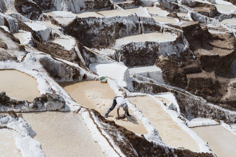 Trabajador que recoge la sal en las charcas de la sal de Maras situadas en el valle sagrado del ` s de Perú fotos de archivo libres de regalías
