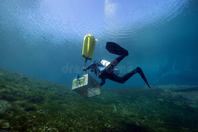 Trabajador subacuático - primaveras del vórtice imagen de archivo libre de regalías