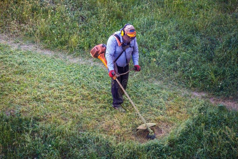 Trabajador sucio gordo del hombre del lawnmover de la visión superior que corta la hierba seca con el cortacésped imagenes de archivo