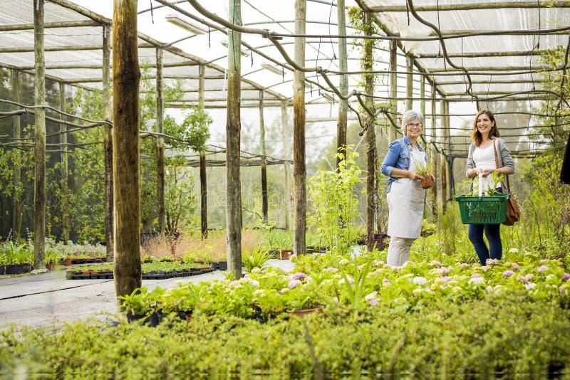 Trabajador y cliente en una casa verde fotografía de archivo libre de regalías