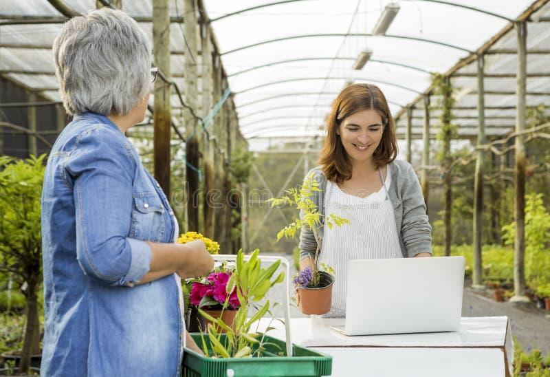 Trabajador y cliente en una floristería foto de archivo