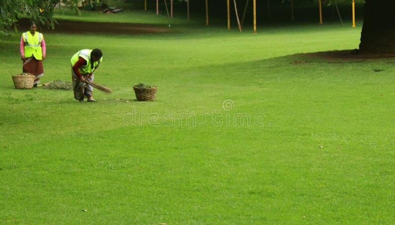 Trabajadores de la limpieza en el jardín ooty foto de archivo libre de regalías