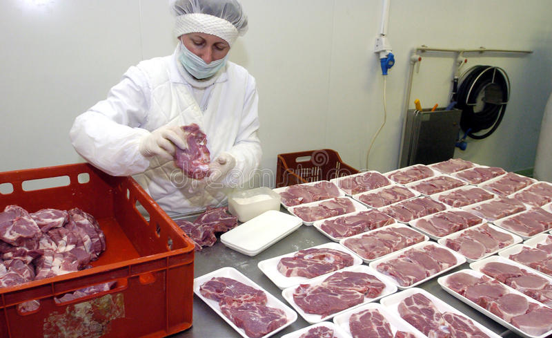 Trabajadores del matadero en el refrigerador imagen de archivo libre de regalías