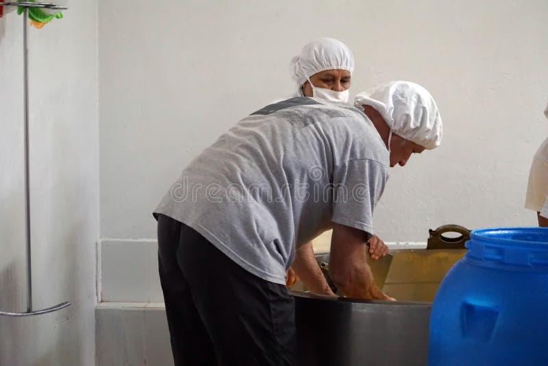 Trabajadores en una quesería imagenes de archivo