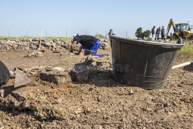 Trabajadores especializados que cavan con la paleta en excava arqueológico fotografía de archivo