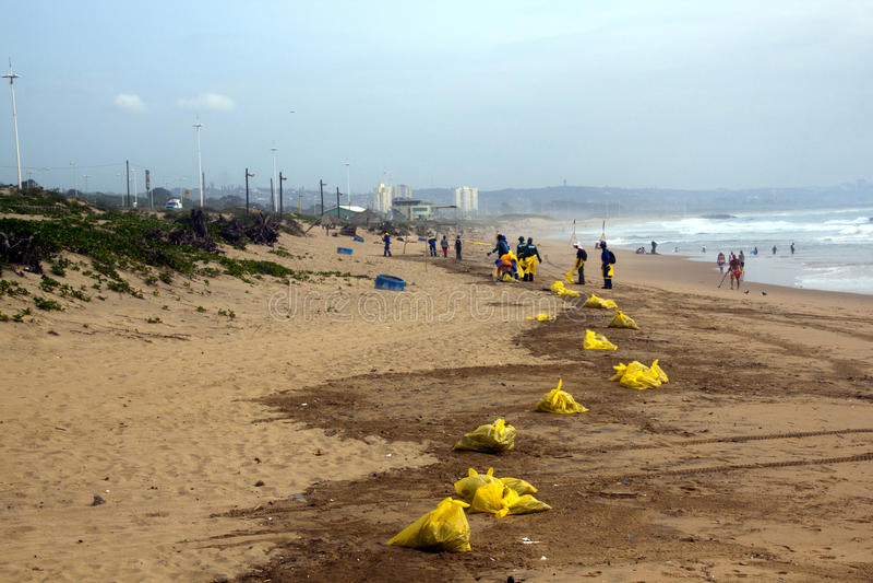 Trabajadores municipales que limpian la ruina en la playa en Durban, Afri del sur imagenes de archivo
