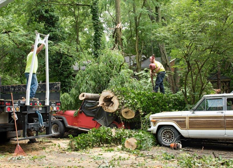Trabajadores que enganchan la grúa al árbol imágenes de archivo libres de regalías