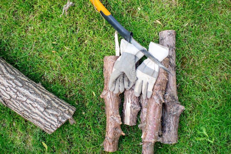 Trabajando en jardín, un mann que asierra un zoquete de la madera fotografía de archivo libre de regalías