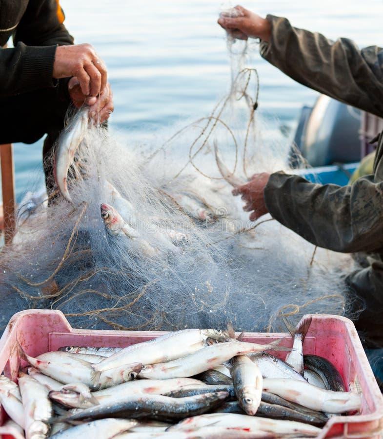 Trabajo de los pescadores imagen de archivo libre de regalías