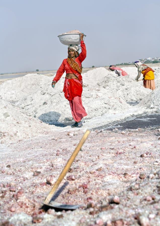 Trabajos de la sal, lago de sal de Sambhar, Rajasthán, la India foto de archivo libre de regalías