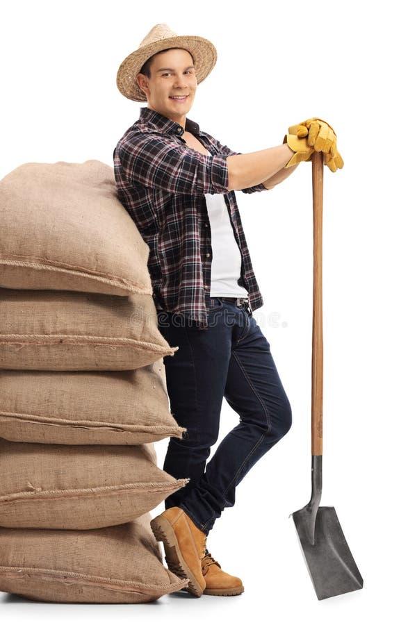 Trabalhador agrícola que inclina-se na pilha de sacos de serapilheira imagens de stock