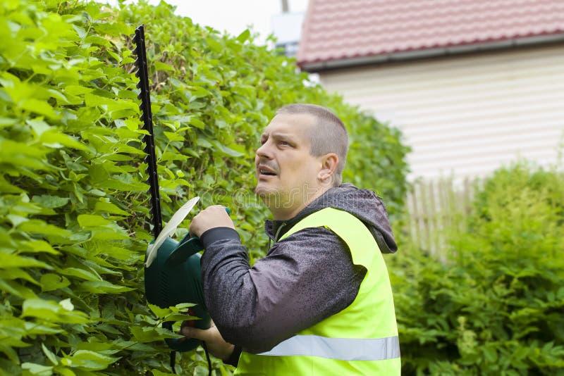 Trabalhador da paisagem com um cortador bonde do arbusto imagem de stock