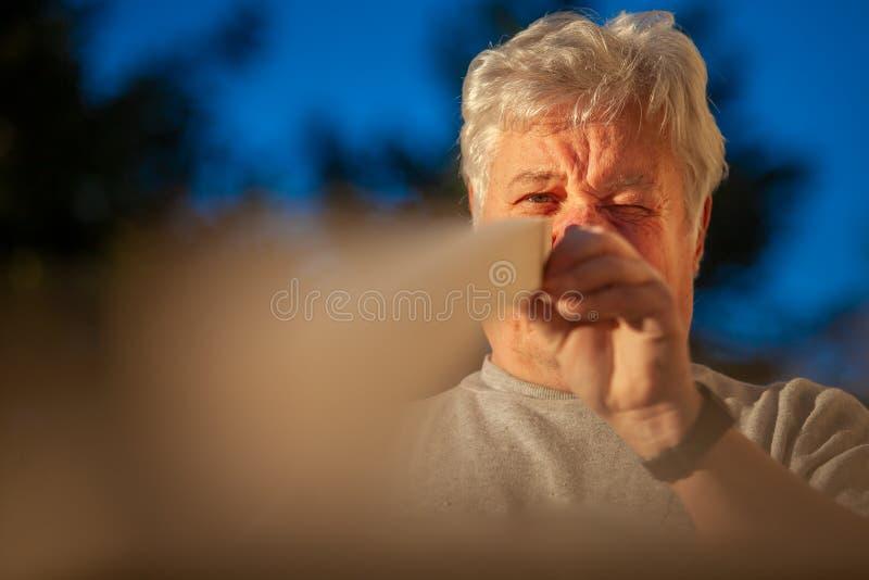 Trabalhador de madeira do artesão que verifica a retidão de madeira pelo olho foto de stock royalty free