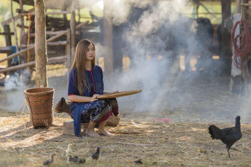 Trabalhador de mulher asiático que joeira o arroz separado fotos de stock royalty free