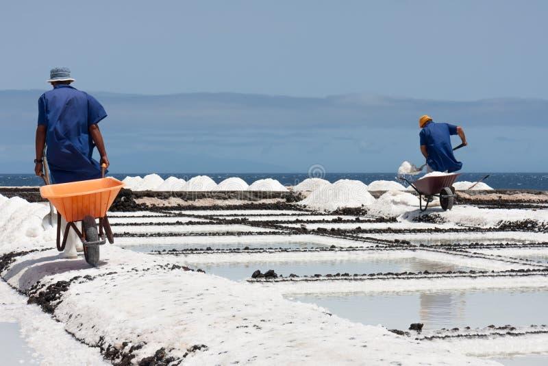 Trabalhadores com o carrinho de mão no La Palma da extração de sal, Ilhas Canárias foto de stock