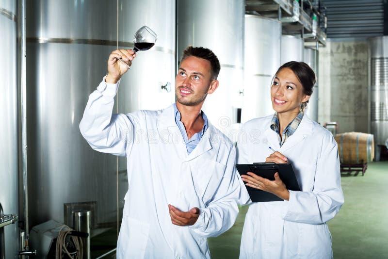 Trabalhadores da adega que tomam notas ao discutir a amostra de vinho fotografia de stock