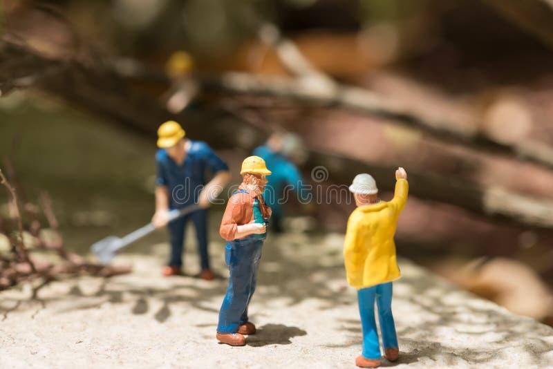Trabalhadores diminutos que cancelam árvores caídas fotografia de stock