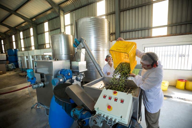 Trabalhadores que trabalham junto perto da linha de produção imagem de stock