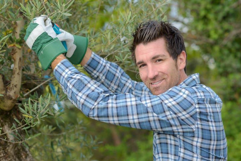 Trabalho acima no jardim fotografia de stock