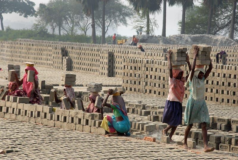 Trabalho da mulher no Brick-field indiano imagem de stock