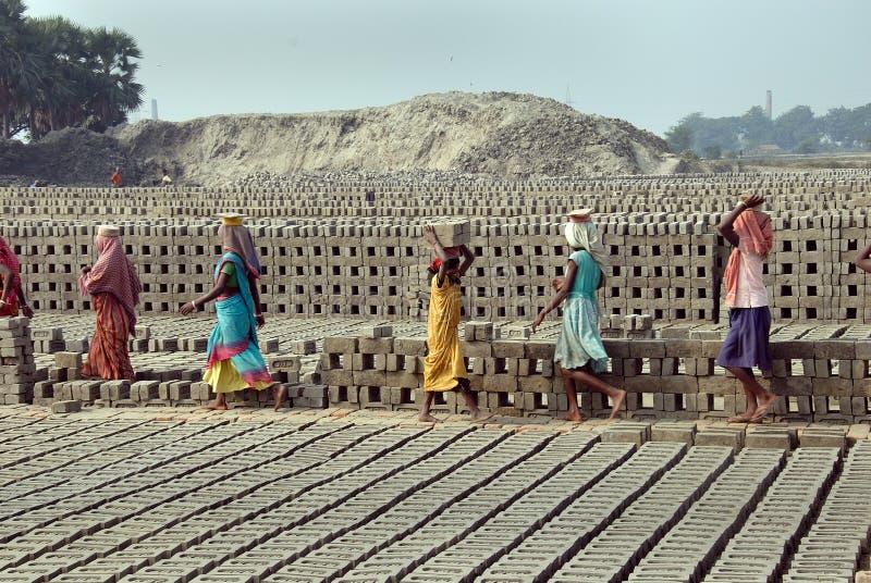 Trabalho da mulher no Brick-field indiano imagens de stock royalty free