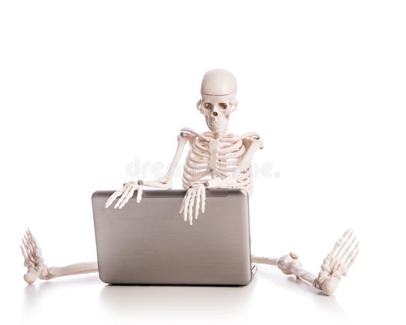 Trabalho De Esqueleto Fotografia de Stock