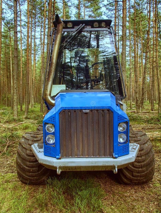 Trabalho do caminhão da ceifeira na ceifeira hábil de três machados da floresta nova do pinho foto de stock
