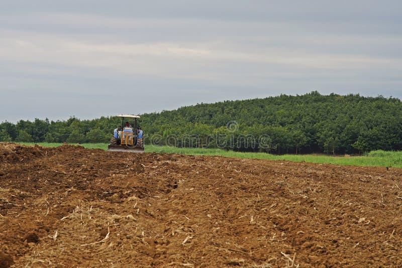 Trabalho do fazendeiro no campo da cana-de-açúcar, aplicação do herbicida, Kampangphet, Tailândia em November8, 2017 fotos de stock royalty free