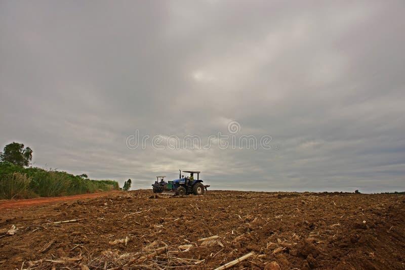 Trabalho do fazendeiro no campo da cana-de-açúcar, cultivo de solo, Kampangphet, Tailândia em November8, 2017 imagem de stock royalty free